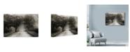 "Trademark Global Nicholas Bell Photography 'Sparks Lane Path' Canvas Art - 32"" x 22"""