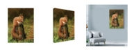"Trademark Global Nigel Artingstall 'Red Squirrel On Stump' Canvas Art - 35"" x 47"""
