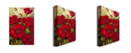"Trademark Global Rio 'Poppies II' Canvas Art - 32"" x 22"""