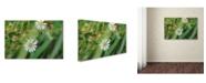 "Trademark Global Monica Fleet 'Distilled Corruption' Canvas Art - 32"" x 22"""