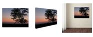 "Trademark Global Monica Fleet 'Soothing Symmetry' Canvas Art - 32"" x 24"""