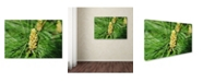 """Trademark Global Monica Mize 'The Start' Canvas Art - 30"""" x 47"""""""