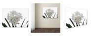 """Trademark Global Kurt Shaffer 'Paper White Bouquet' Canvas Art - 24"""" x 32"""""""