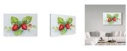 "Trademark Global Joanne Porter 'Berry Border' Canvas Art - 12"" x 19"""