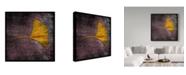 "Trademark Global John W. Golden 'Gingko Purple' Canvas Art - 14"" x 14"""
