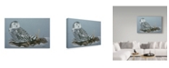 "Trademark Global Rusty Frentner 'Owl' Canvas Art - 12"" x 19"""