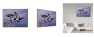 "Trademark Global Wilhelm Goebel '1986 Redhead Ducks' Canvas Art - 14"" x 19"""