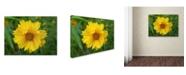 "Trademark Global Monica Fleet 'Purity' Canvas Art - 14"" x 19"""