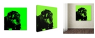 """Trademark Global Claire Doherty 'Chimp No 5' Canvas Art - 24"""" x 24"""""""