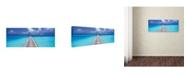 "Trademark Global David Evans 'Paradise Walk' Canvas Art - 19"" x 6"""