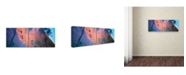 "Trademark Global David Evans 'Uluru Up Close' Canvas Art - 19"" x 6"""