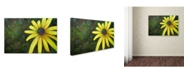 "Trademark Global Jennifer Redstreake 'Black Eyed Susan' Canvas Art - 22"" x 32"""