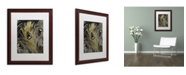 """Trademark Global Color Bakery 'Feather Fashion II' Matted Framed Art - 16"""" x 20"""""""