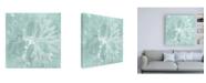 "Trademark Global Vision Studio Seaweed on Aqua III Canvas Art - 36.5"" x 48"""
