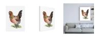 "Trademark Global Jennifer Paxton Parker Chicken Dance II Canvas Art - 19.5"" x 26"""