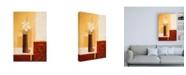 "Trademark Global Pablo Esteban White Flowers in Brown Vase Canvas Art - 15.5"" x 21"""