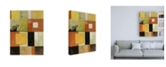 "Trademark Global Pablo Esteban Overlapping Squares Canvas Art - 19.5"" x 26"""
