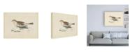 "Trademark Global Wild Apple Portfolio Snow Bunting Print Canvas Art - 15.5"" x 21"""