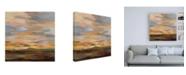 "Trademark Global Silvia Vassileva High Desert Sky III Canvas Art - 19.5"" x 26"""
