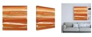 "Trademark Global Chris Paschke Gilded Mandarin III Burnt Orange Canvas Art - 15.5"" x 21"""
