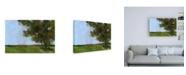 "Trademark Global Paul Baile Autumn Oak and Empty Fields Canvas Art - 27"" x 33.5"""