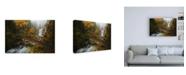 "Trademark Global Enrico Fossat A Bridge in the Forest Canvas Art - 19.5"" x 26"""