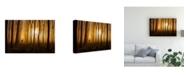 "Trademark Global Nafets Norim Once Upon a Time Deer Canvas Art - 20"" x 25"""