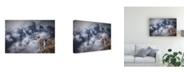 "Trademark Global Marc Apers Sesmien Mountains Canvas Art - 20"" x 25"""