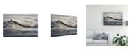 "Trademark Global Peter Kovacik Island in the Broken Sea Canvas Art - 20"" x 25"""