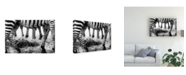"Trademark Global Mohammed Alnaser Savannah Contrast Canvas Art - 37"" x 49"""