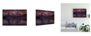 "Trademark Global Peter Svoboda Mqep Purple Mirroring Canvas Art - 15"" x 20"""