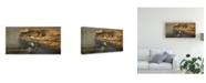 """Trademark Global Michael Budden Misty Passage Canvas Art - 15"""" x 20"""""""