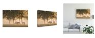"Trademark Global Monte Nagler Horses in the Mist Canvas Art - 20"" x 25"""