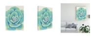 "Trademark Global Tim O'Toole Pastel Succulent IV Canvas Art - 15.5"" x 21"""