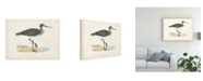 "Trademark Global Morris Morris Sandpiper III Canvas Art - 27"" x 33.5"""
