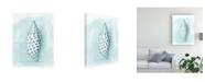 "Trademark Global Megan Meagher Coastal Shell Schematic IV Canvas Art - 15.5"" x 21"""