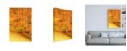"""Trademark Global Dan Ballard Yellow Foliage Autumn Canvas Art - 19.5"""" x 26"""""""