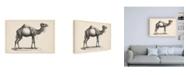 """Trademark Global Brodtmann Brodtmann Dromedary Canvas Art - 15.5"""" x 21"""""""