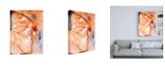 "Trademark Global Joyce Combs Lighting the Way I Canvas Art - 27"" x 33.5"""