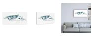 "Trademark Global June Erica Vess Cetacea Shepherds Beak Whale Canvas Art - 15.5"" x 21"""