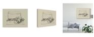 "Trademark Global Ethan Harper Stowaway II Canvas Art - 37"" x 49"""