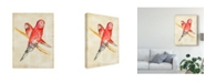 "Trademark Global Chariklia Zarris Fanciful Birds I Canvas Art - 20"" x 25"""