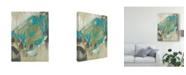 "Trademark Global Jennifer Goldberger Whirling I Canvas Art - 37"" x 49"""