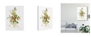 "Trademark Global Danhui Nai Floursack Holiday IX Canvas Art - 37"" x 49"""