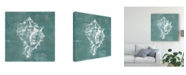 "Trademark Global Jennifer Goldberger Solitary Shell I Canvas Art - 15"" x 20"""