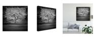 "Trademark Global Martin Henson Woodland Tones II Canvas Art - 15"" x 20"""