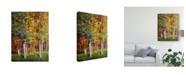 "Trademark Global David Drost Aspen Glen I Canvas Art - 37"" x 49"""