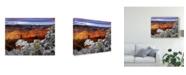 "Trademark Global David Drost Snowy Grand Canyon IV Canvas Art - 20"" x 25"""