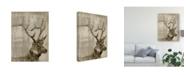 "Trademark Global Jennifer Goldberger Sepia Elk Canvas Art - 20"" x 25"""