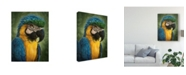"Trademark Global Patrick Lamontagne Parrot Totem Canvas Art - 20"" x 25"""